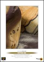 Permajet Papyrus Classic 310g, Din A3+, 25 Blatt