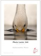 "Hahnemühle Photo Luster 260g - 3""core - 24""Rolle x 30m"